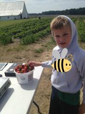 Buying the strawberries