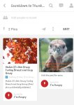 Countdown to Thanksgiving Pinterest Page