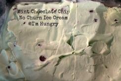 mint chocolate chip no churn ice cream