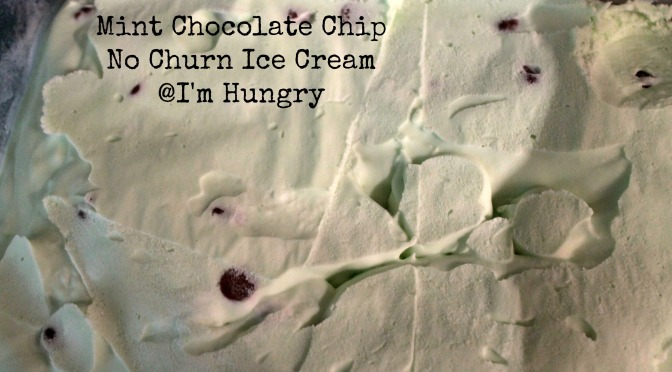 Mint Chocolate Chip No Churn Ice Cream