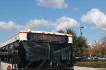 Bus to Animal Kingdom