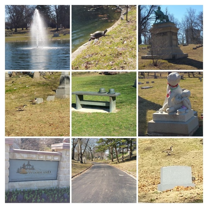 Woodland Cemetery #1