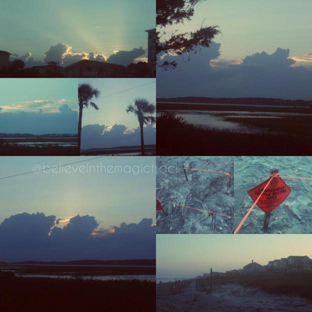 collage #3.jpg