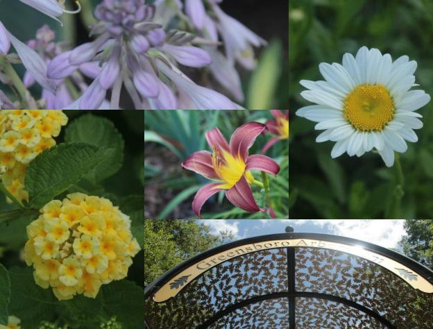 collage #4.jpg