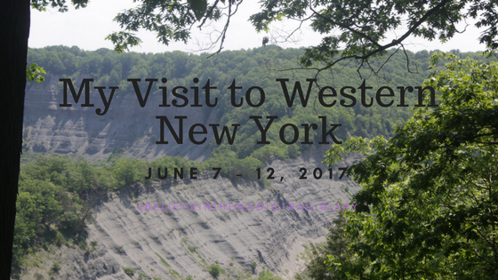 My Visit to Western New York