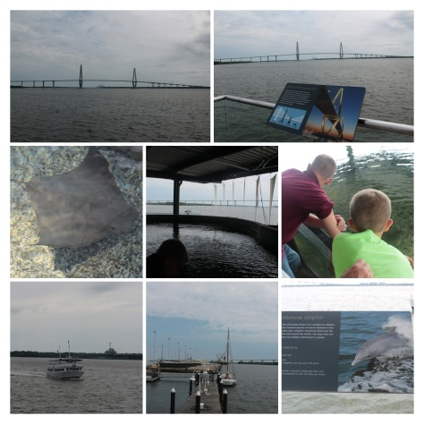 20170626110659_IMG_1720-COLLAGE