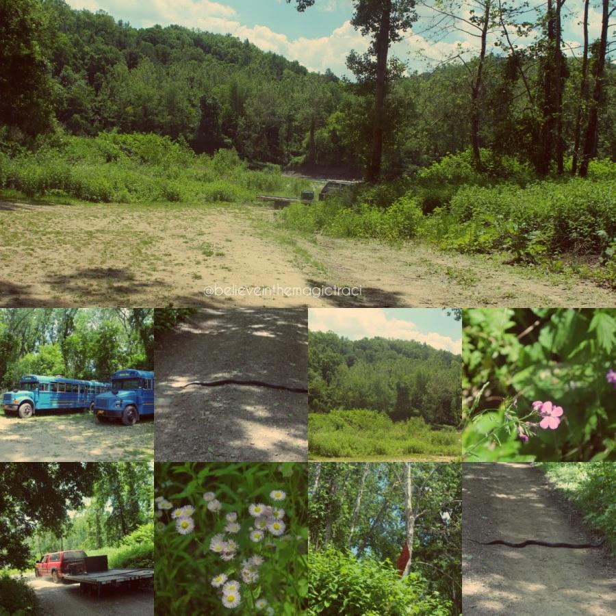 St Helena trail back