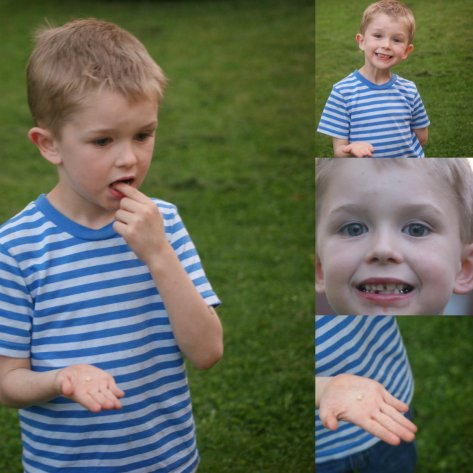 spring 2012 collage 3 - Copy